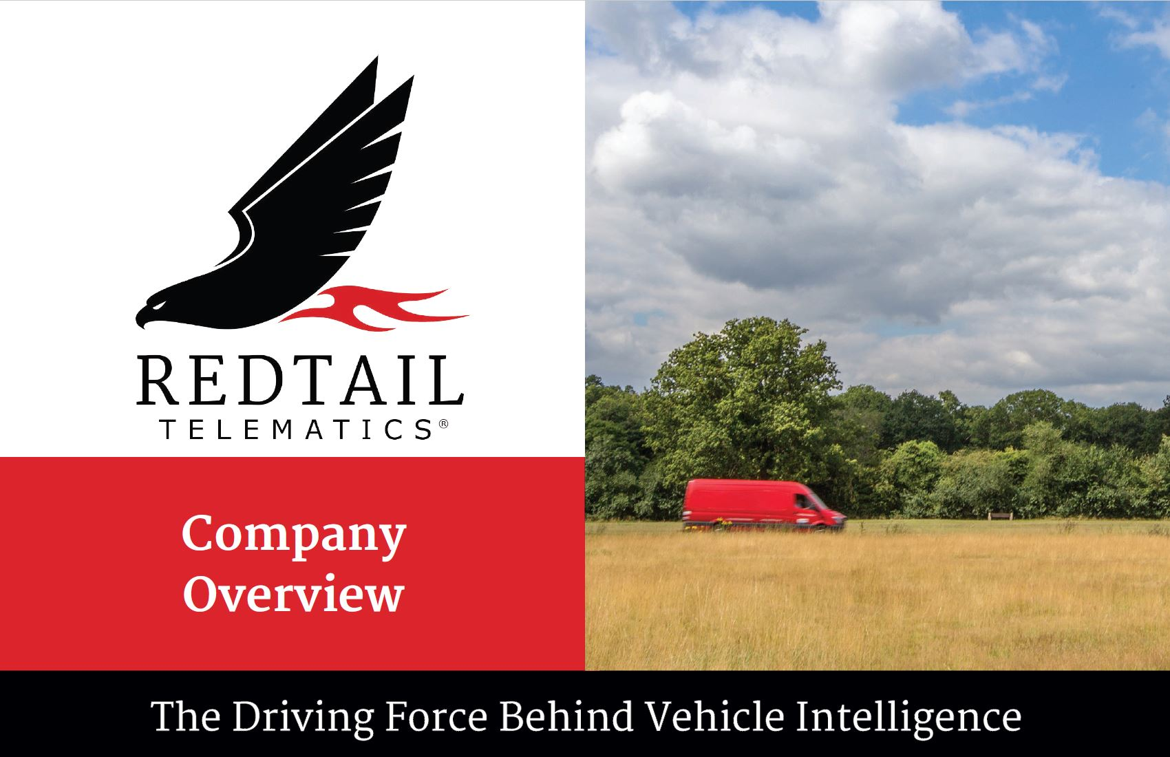 Redtail Overview